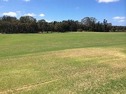 grass area worigee.jpg