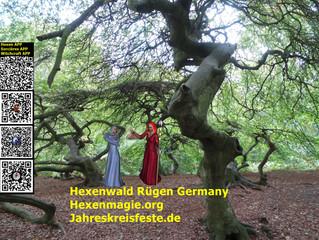 Ruegen Urlaub, Hexenwald, Steinkreis, Steingräber