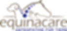 equinacare_png_492.png