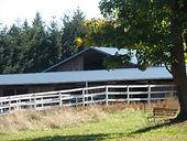 Farm1[1].jpg