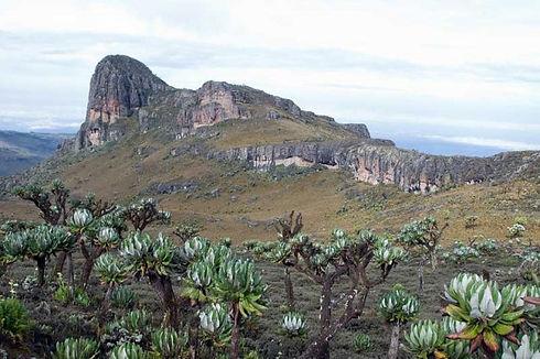 Mount-Elgon-National-Park.jpg