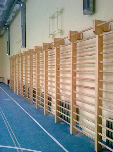 Gimnastikos sienelės