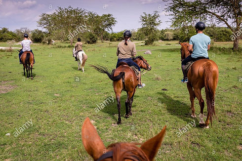 horse back riding - l_edited.jpg