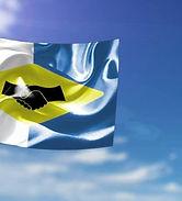 pddco-flag.jpg