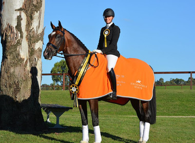Iresias L Champion of Champions Dressage with the stars 2017