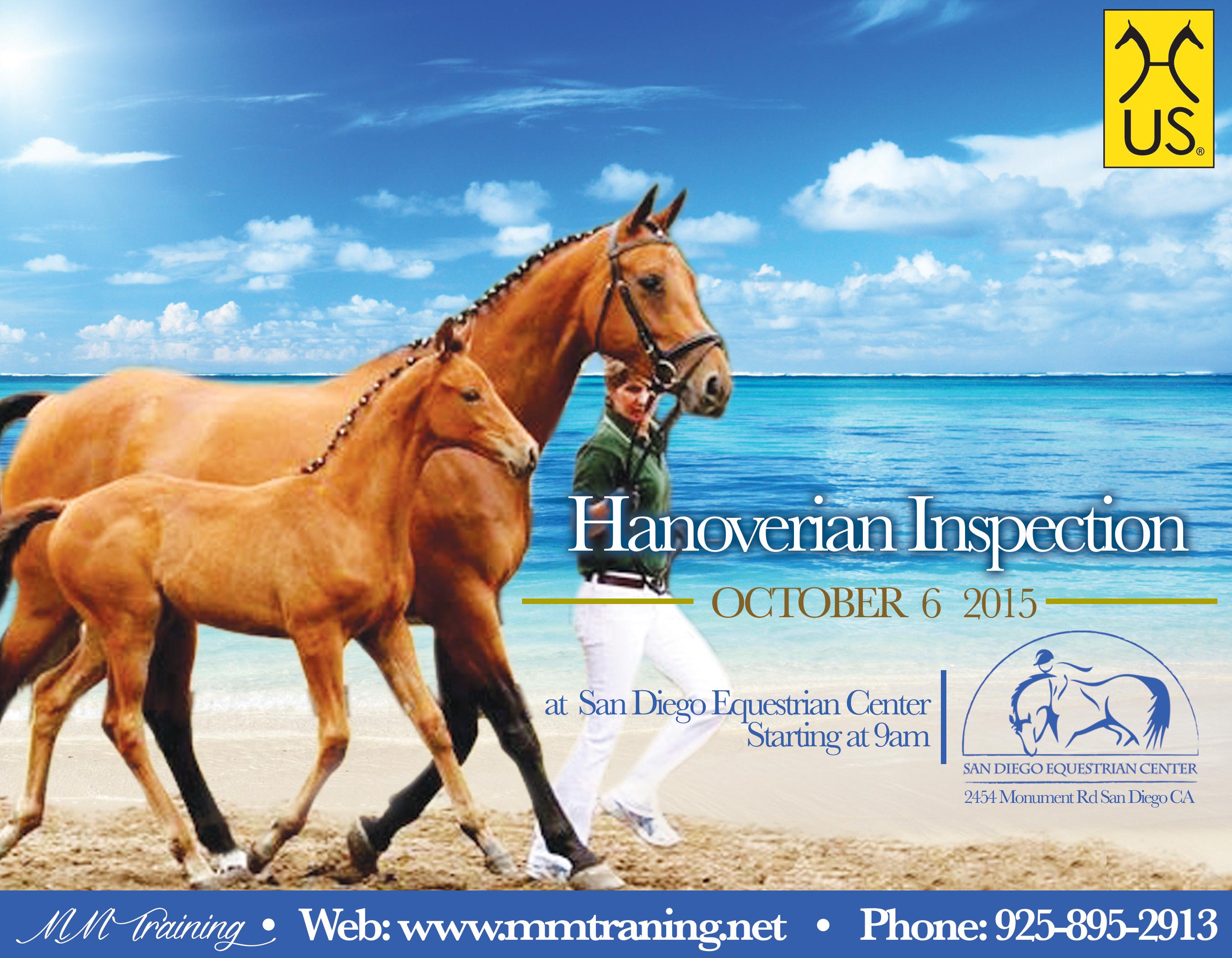 Hanoverian Inspection