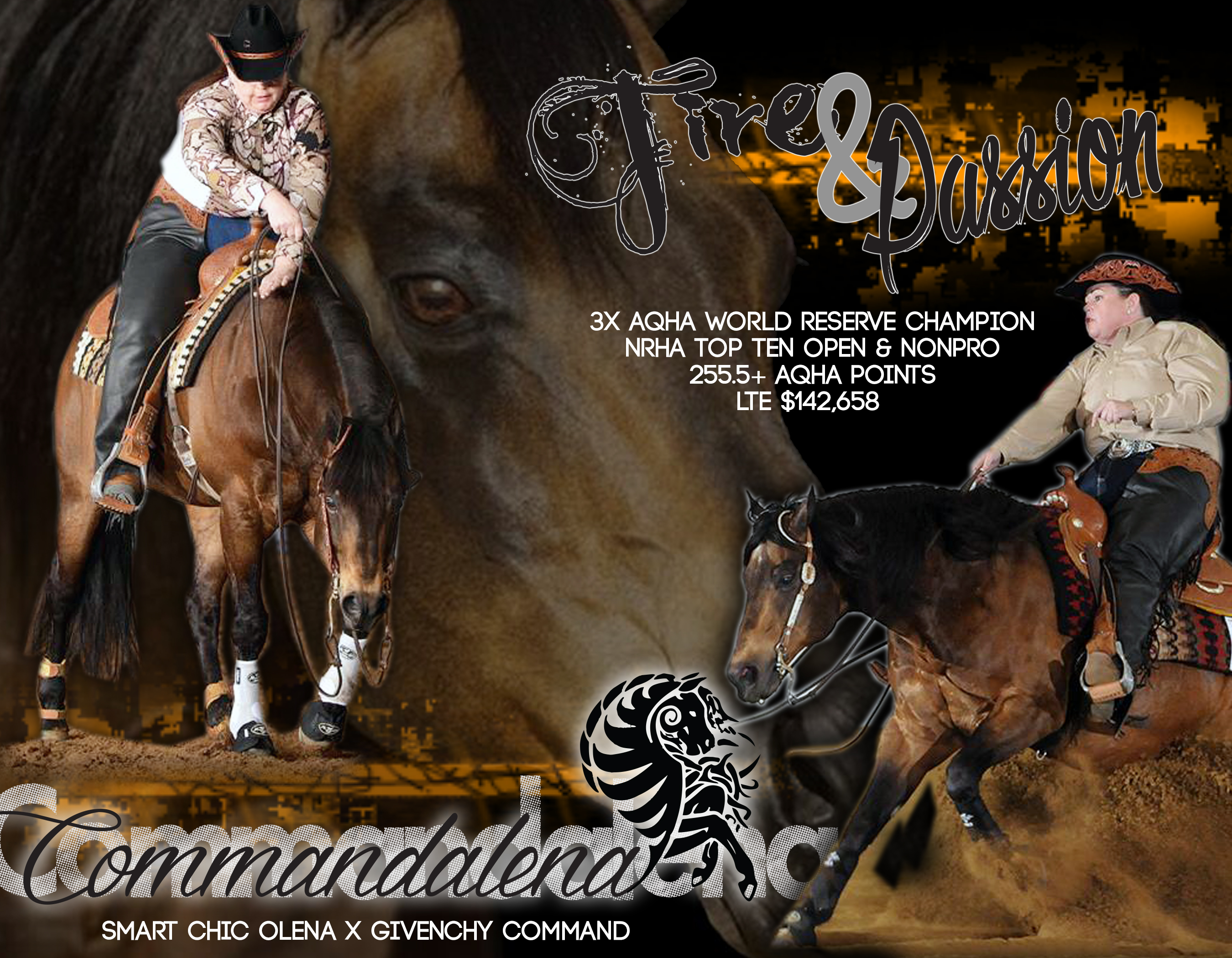 Stallion: Comandalena