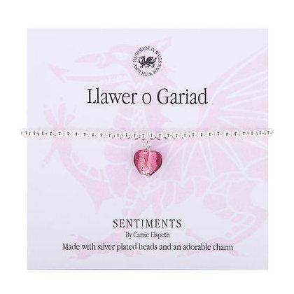 Llawer o Gariad/Lots of Love