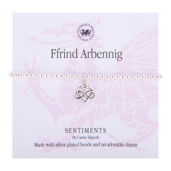 Ffrind Arbennig/Special Friend