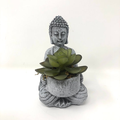 Sitting Buddha With Succulent