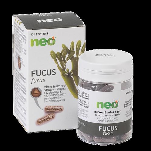 NEOVITAL FUCUS NEO 45 CAPS