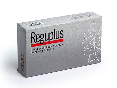 REGUPLUS ENERGIA ARTICULAR