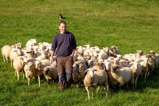 Andri mit seinen Schafen
