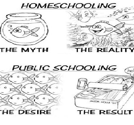 Can Homeschool Students Get a Diploma & Go to University?