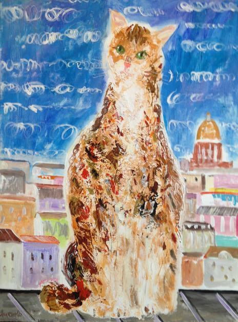 St. Petersburg cat