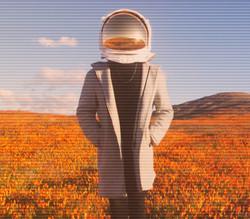 Moon Dude solo Poppy field flat_edited_e