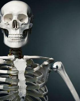 datos-curiosos-del-cuerpo-humano-655x368