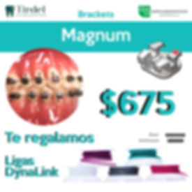 Promo MagnumDL.jpg