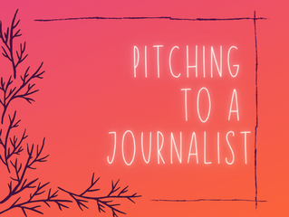 Pitching to a journalist