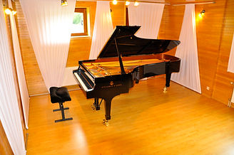 piano Steinway D