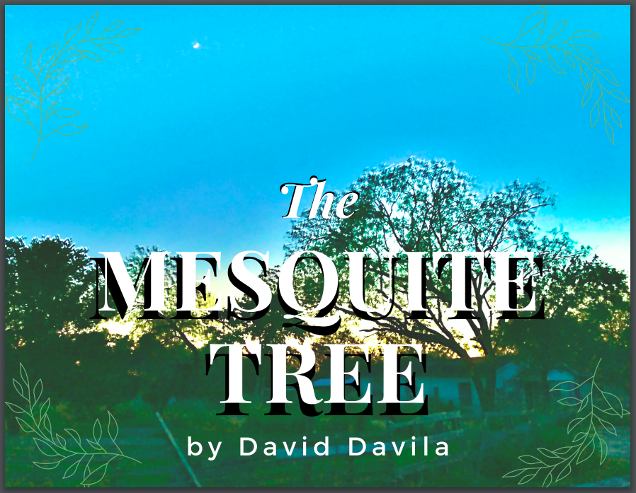 the mesquite tree by david davila