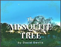 the mesquite tree by david davila