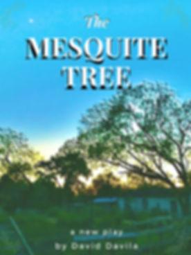 Mesquite Tree.jpg
