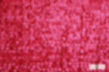 Circle Fuchsia.jpg