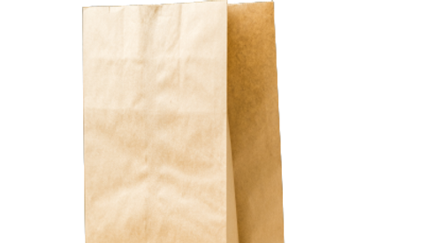 paper bag:10LB single kraft bag(500's)