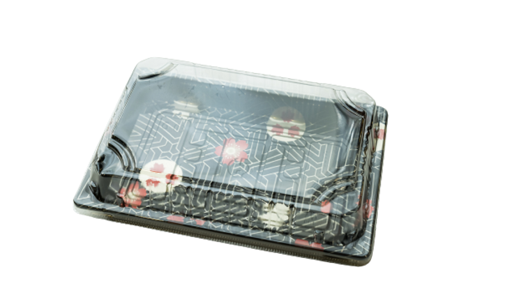 HQ sushi container:HQ-10,(1200 sets)