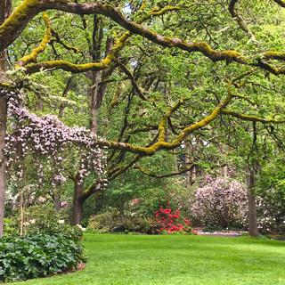 Springtime at Hendricks