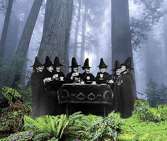 Druid-Sisters-Front-Witches 2.jpg