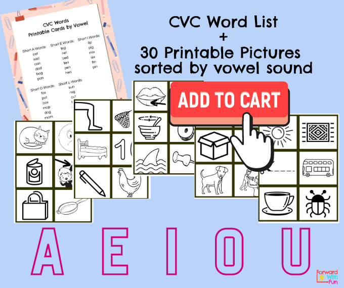 Purchase CVC word pictures sorted by vowel sound, 30 in all