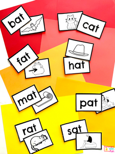 each word flashcard is matched with its picture. words/pictures are: bat, cat, fat, hat, mat, pat, rat, sat