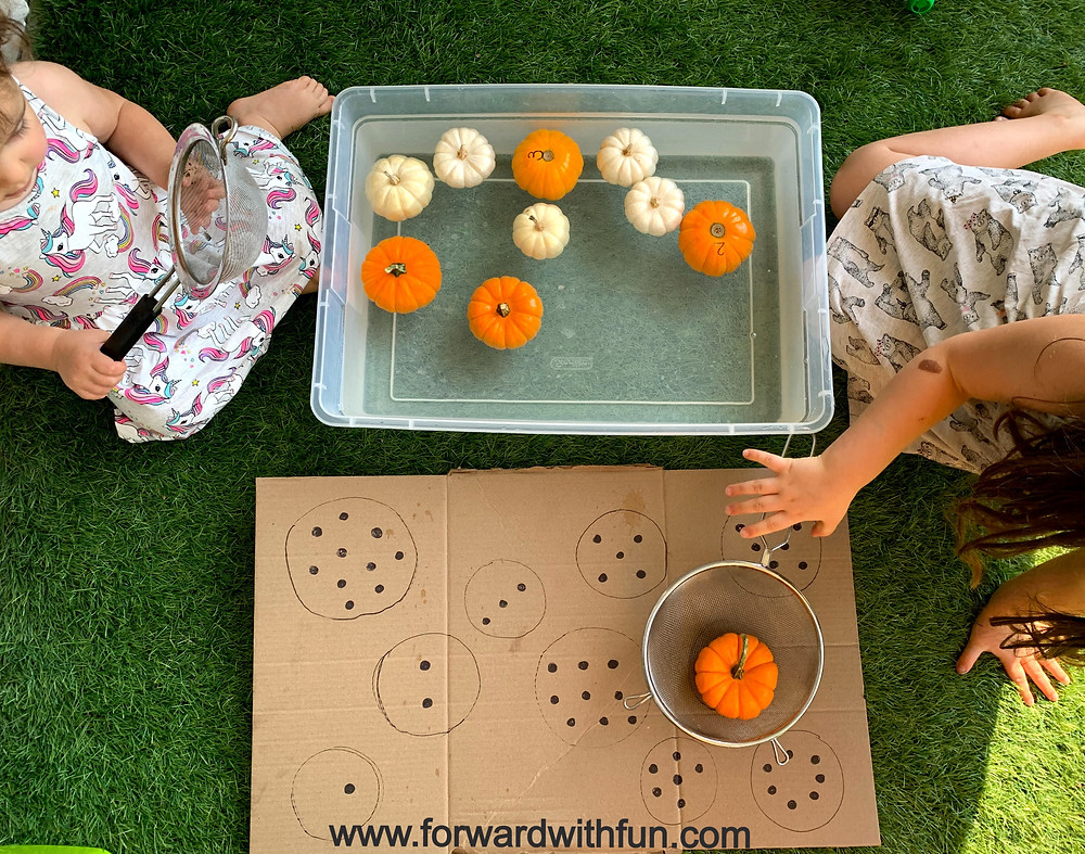 Kids scooping small pumpkins out of water filled container and placing them on correct number of dots to match the number on the pumpkin