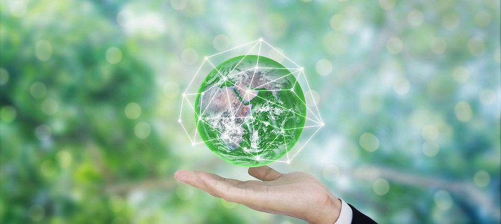 energy savings website.jpg