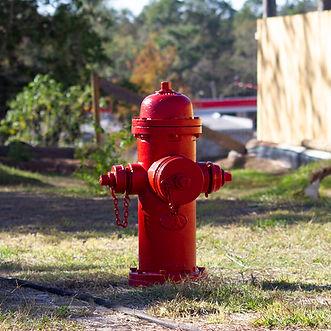CentralBark-hydrant.jpg