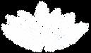OSRVP-White-Logo-72dpi.png