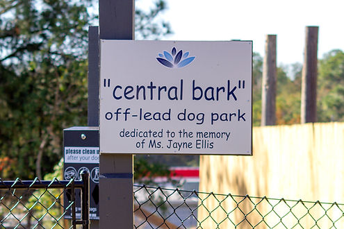 CentralBark-1.jpg