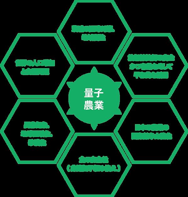 量子農業 茨城の過疎、地域創生 国際競争力強化