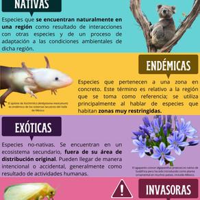 Clasificando Especies