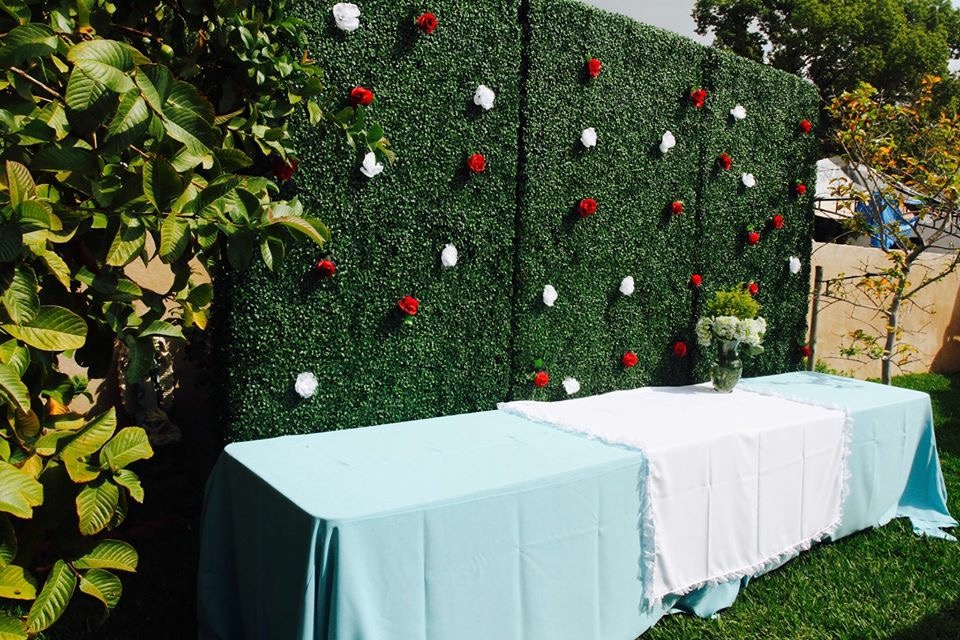 Themed Hedge Backdrop