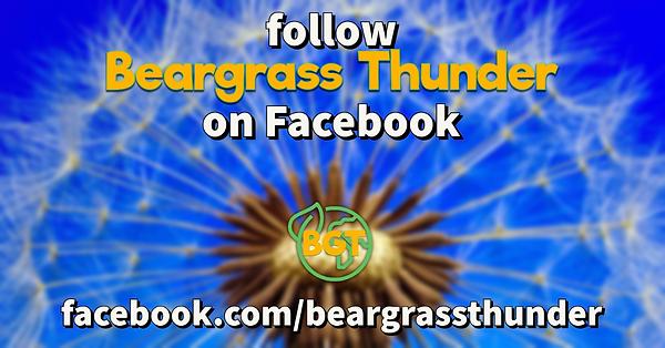 follow bgt on fb.png