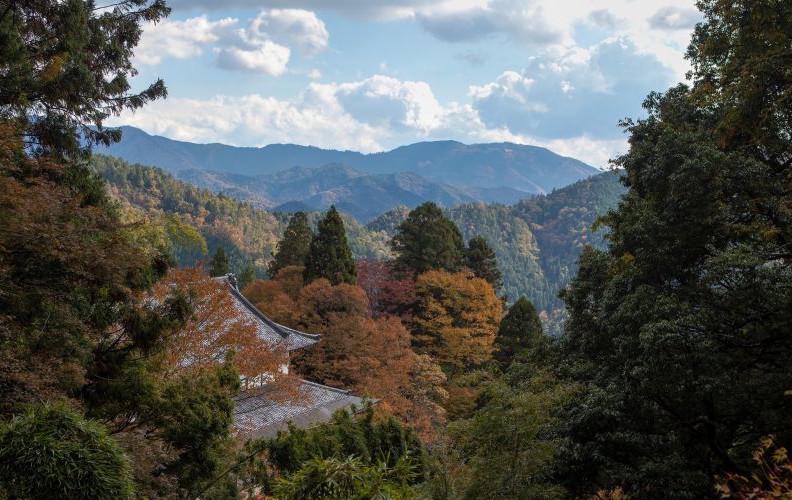 Mt. Kurama, Kyoto