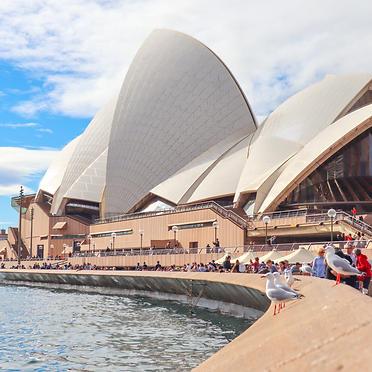 GO Sydney!