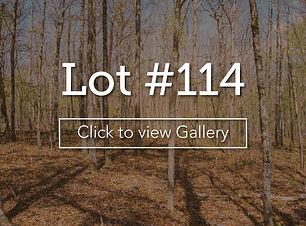 LongBranchLotCoverlot114.jpg