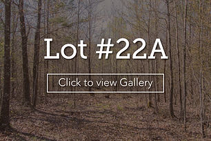 LongBranchLotCover22a.jpg
