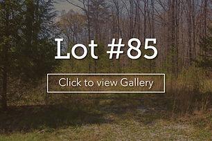 LongBranchLotCoverlot85.jpg