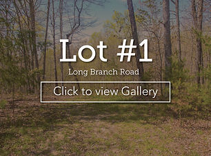 LongBranchLotCoverLot1LBroad.jpg