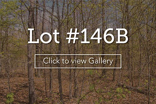 LongBranchLotCoverLot146B.JPG